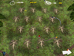 Critter Match Screenshot 3